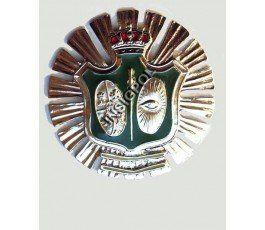 placa-cuerpo-vigilancia-1920