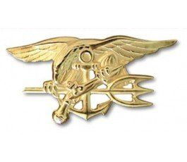 Pin NAVY SEAL